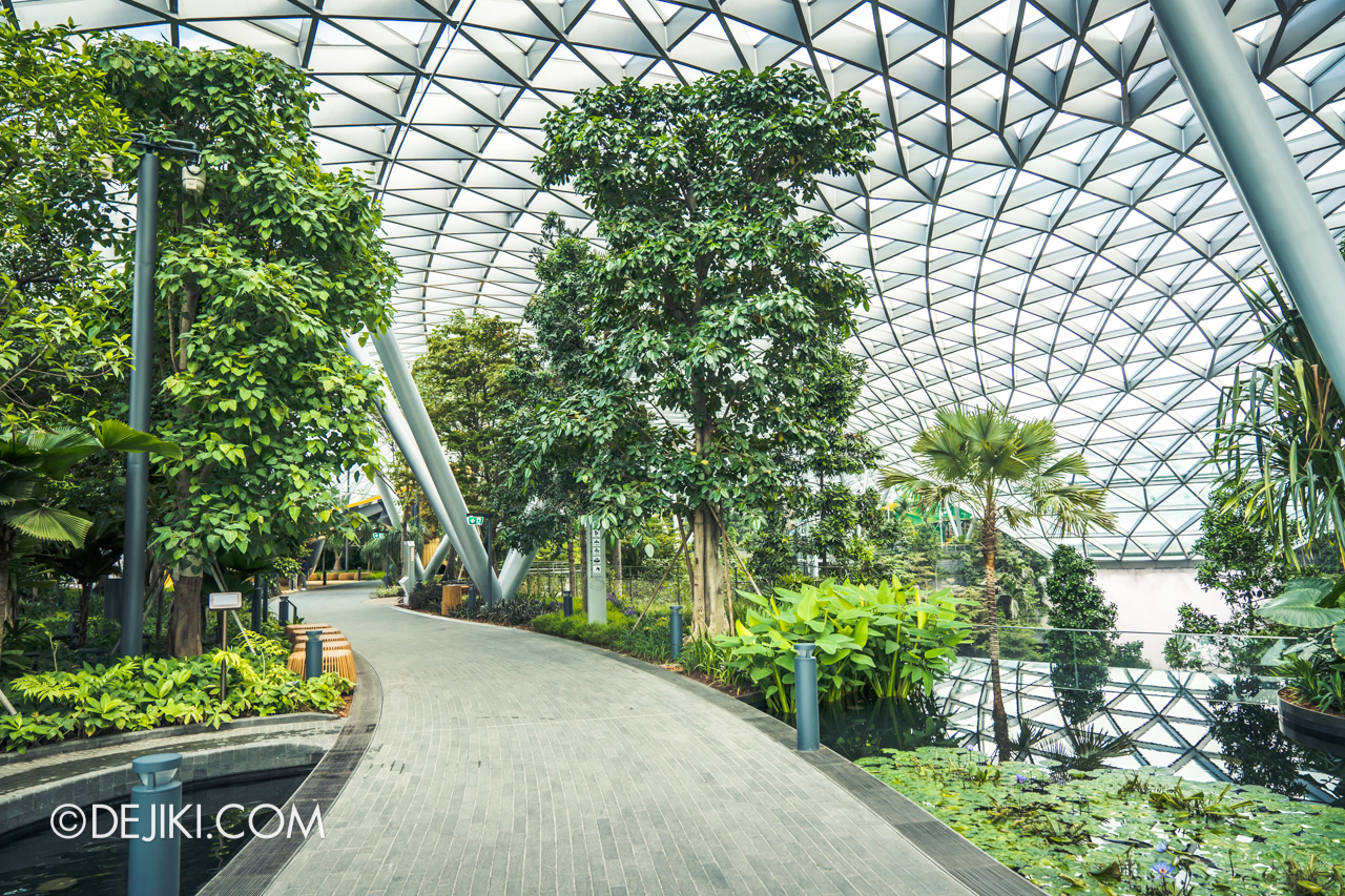 Canopy Park Attractions At Jewel Changi Airport Dejiki Com