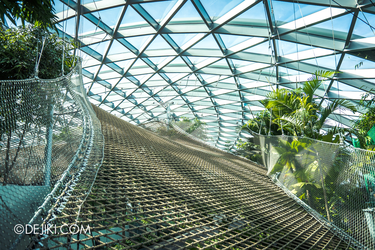 Jewel Changi Airport - Canopy Park 5 - Manulife Sky Nets Walking 1