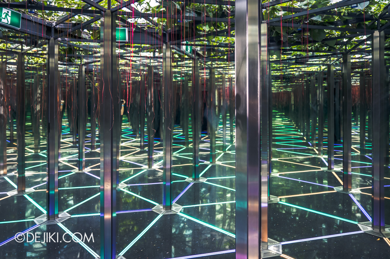 Jewel Changi Airport - Canopy Park 7 - Mirror maze endless