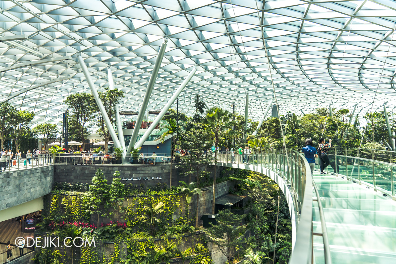 Jewel Changi Airport - Canopy Park 8 Canopy Bridge - overview 1