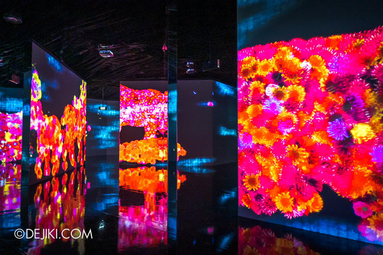 Gardens by the Bay 2020 Future Together by Teamlab Japan Indoor exhibit Animals of Flowers Symbiotic Lives