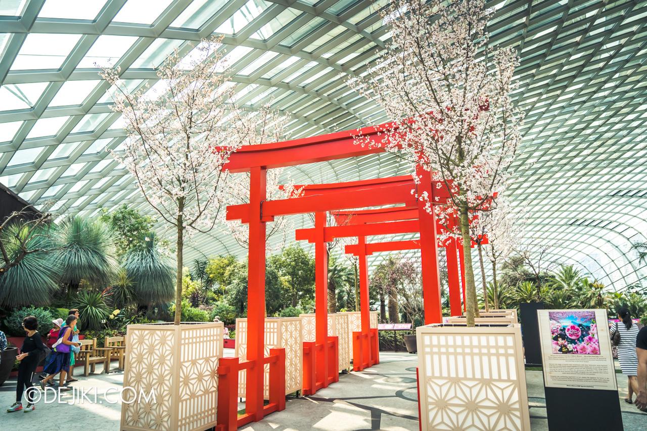 Gardens by the Bay Sakura Matsuri 2020 Upper Level Tori Gates display