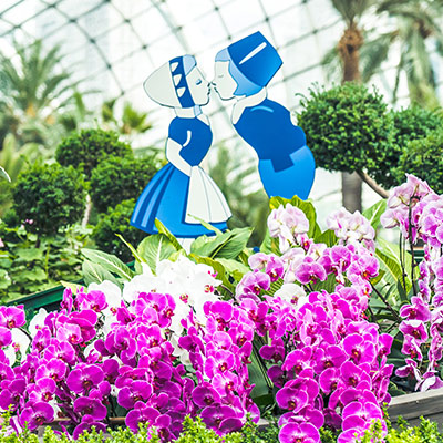 Gardens by the Bay July 2020 Reopening of Flower Dome sq2