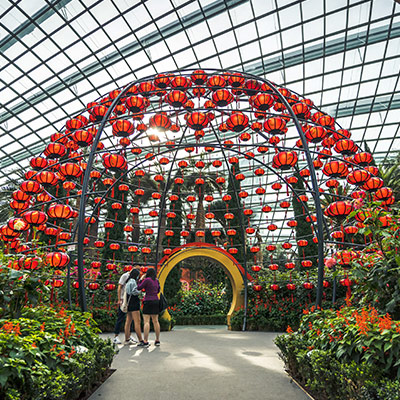 Gardens by the Bay 2021 Dahlia Dreams sq1