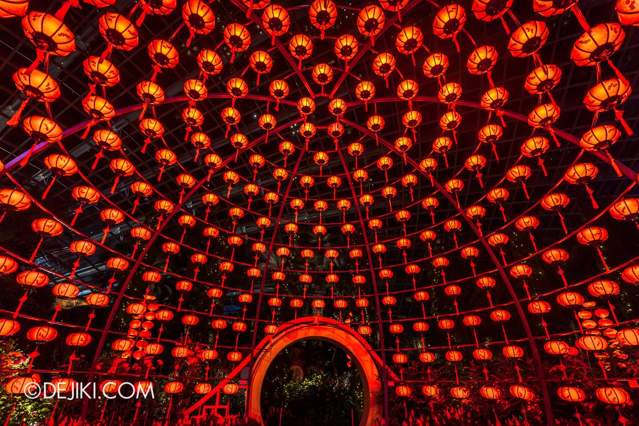 Gardens by the Bay Dahlia Dreams 2021 Lanterns at Night Lantern Globe Inside