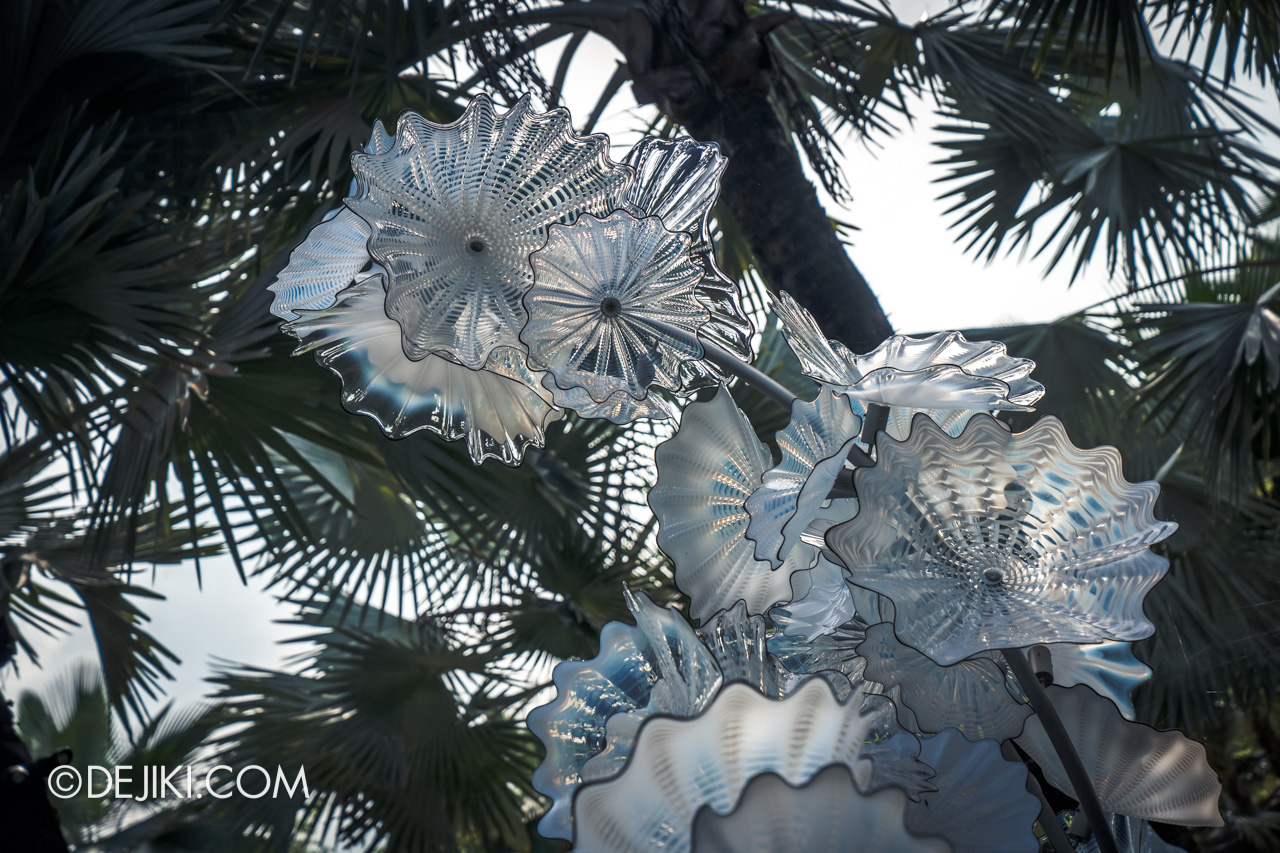 Gardens by the Bay Chihuly in Bloom Outdoor 08 Ethereal White Persians closeup 1