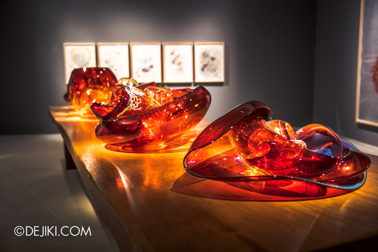 Gardens by the Bay Dale Chihuly Glass in Bloom Gallery 3 Bowls