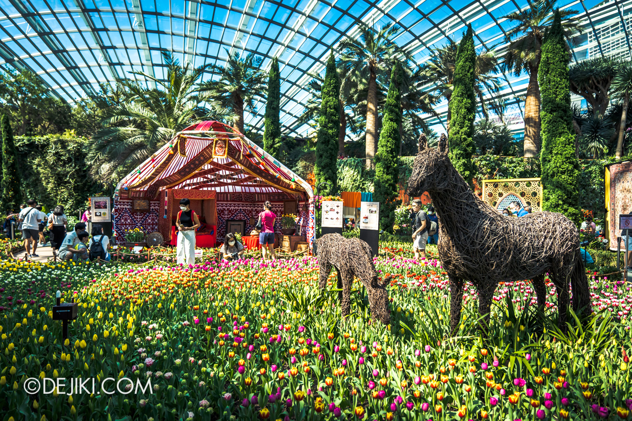 Gardens by the Bay Flower Dome 2021 Tulipmania Its Wild Origins Flower field overview